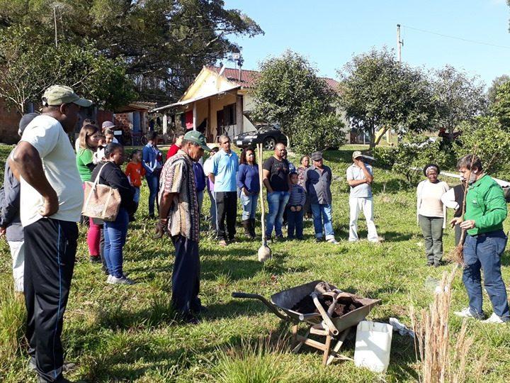 Quilombos recebem mudas e práticas de plantio