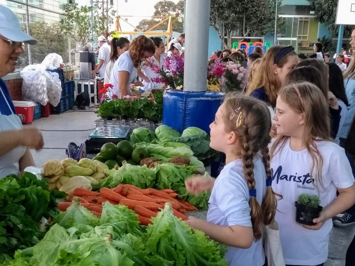 Feiras itinerantes nas escolas e as conversas sobre agroecologia
