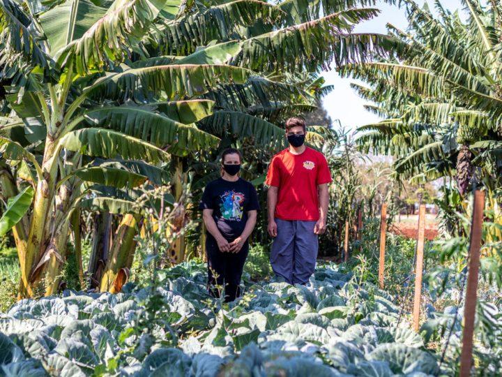 CAPA e famílias parceiras preparam 712 cestas para entrega em Guaíra e Terra Roxa